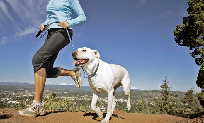 Correre con il cane: 6 consigli per iniziare