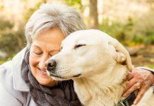 Il potere terapeutico degli animali: un libro sulla Pet Therapy