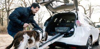X-Trail 4dogs, concept Nissan prototipo per viaggiare col cane