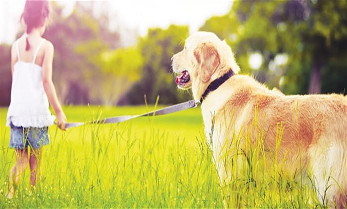 Cani e bambini: un opuscolo dal Ministero della Sanità