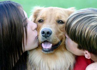 Cani e bambini: un opuscolo dal Ministero della Salute