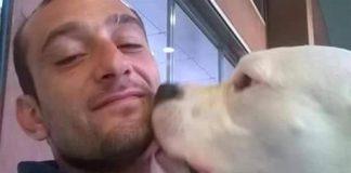Il cane Iceberg è salvo e tornerà in Italia