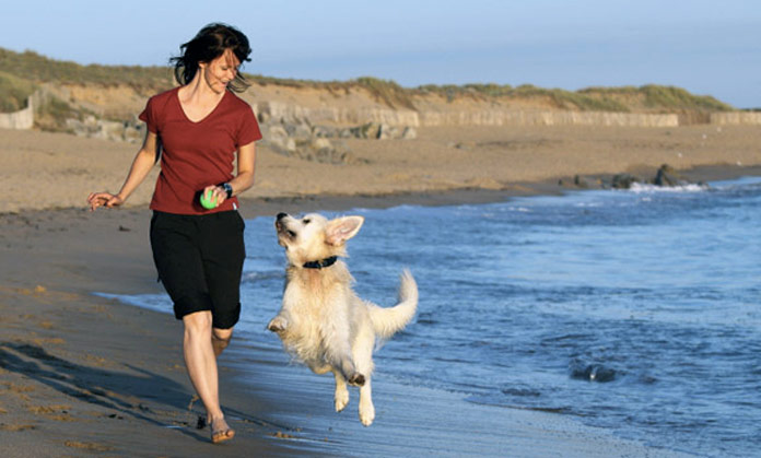 In forma con il cane: ecco come